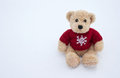 Teddy  Bear Royalty Free Stock Photography - 29756587