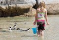 Girl Plays With Little Penguins On Beach Stock Photo - 29839430
