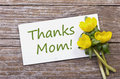 Thanks Mom Royalty Free Stock Photo - 29839495