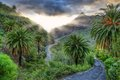 Palms And Serpentine Near Masca Village With Mountains, Tenerife Stock Photos - 29880943