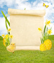Blank Scroll On Easter Background Royalty Free Stock Photo - 29894725