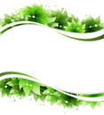 Abstract Green Flowers Stock Images - 29895824