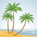 Three Palm Trees In Vector Royalty Free Stock Images - 29948859