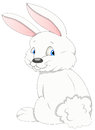Bunny - Cartoon Character - Vector Illustration Stock Photography - 29954522