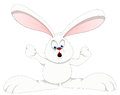 Bunny - Cartoon Character- Vector Illustration Stock Images - 29954904