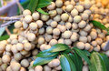 A Longan In Thailand Market Stock Images - 29959634