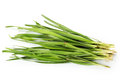Chives Stock Photos - 29991113