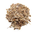 Seed Of Dill Stock Photo - 29994750