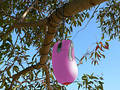 Pink Mouse Hanging From Tree Royalty Free Stock Images - 306689
