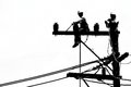 Silhouette Electrician Working On Electricity Post Stock Image - 30002071