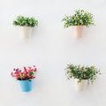 Colorful Flowerpots On  The White Wall Stock Image - 30088481