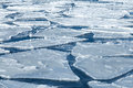 Blocks Of Ice On Frozen Blue Sea Stock Photography - 30101792
