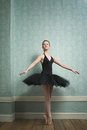 Beautiful Ballerina In Dance Pose Stock Photography - 30102262
