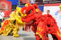 Chinese Lion Dancing Stock Photo - 30134230