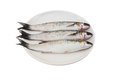 Three Gray Mullet Fish On Plate Royalty Free Stock Images - 30159119