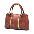 Crocodile Leather Handbag  Stock Images - 30196874