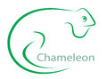 Vector Image Of An Chameleon Stock Images - 30212704