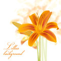 Realistic Lillies Background Royalty Free Stock Image - 30219556