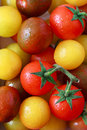 Tomatoes. Royalty Free Stock Images - 30220899