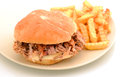 Pulled Pork Sandwich And Fries Royalty Free Stock Image - 30241896