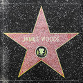Actor James Woods  Star On Hollywood Walk Of Fame Royalty Free Stock Photo - 30290025