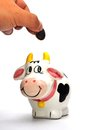 Cow Coin Box Royalty Free Stock Photography - 30296547