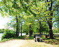 Picnic Table In The Park Stock Photos - 30366763