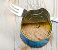 Canned Tuna Fish Royalty Free Stock Images - 30370289