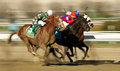 Declan S Warrior Wins The Bay Shore Stakes Royalty Free Stock Photography - 30378567