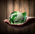 Green World In The Hand Royalty Free Stock Photo - 30386895