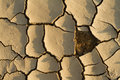 The Drought Puzzle Stock Image - 3044001