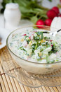 Traditional Russian Summer Soup Royalty Free Stock Photos - 30462548