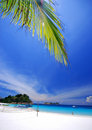 Tropical Beach Stock Images - 3056984