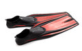 Red Swim Fins Stock Photography - 30513822