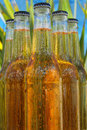 Bottles Of Beer Royalty Free Stock Photography - 3060837