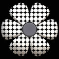 Black And White Daisy Stock Photo - 3062060