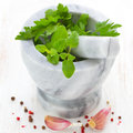 Mortar With Parsley Royalty Free Stock Photography - 30630007