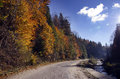 Autumn Road Stock Photography - 30642782