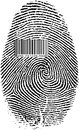 Finger Print Barcode Royalty Free Stock Image - 30686216