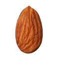 One Almond Isolated On White Background Stock Image - 30696501