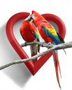 Love Birds Stock Images - 3074644