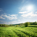 Country Road In A Meadow Stock Photography - 30723452