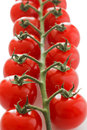 Ripe Cherry Tomatoes On The Vine Stock Images - 30739194
