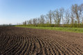 Ploughed Field Royalty Free Stock Photo - 30788035