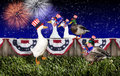Fourth July Duck Party Stock Image - 30788561