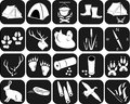Icons For Hunting Stock Photo - 30794880