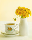 Dandelion Tea Stock Images - 30836364