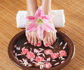 A Spa Composition Of Feet And Petals In A Bowl Stock Images - 30844794