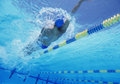 Young Professional Male Athlete Doing Backstroke In Swimming Pool Royalty Free Stock Photo - 30857035