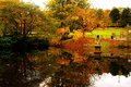 Calm Fall Water Royalty Free Stock Images - 30926019